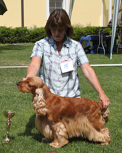 California Dream z Vejminku: Exc.I., CAC, Best Of Variety. Owned by A. Flicker